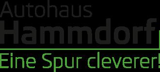 Autohaus Hammdorf Retina Logo