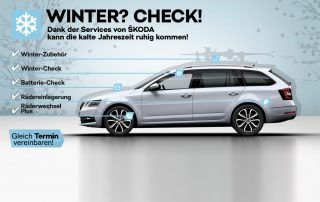 Hammdorf Wintercheck 2018